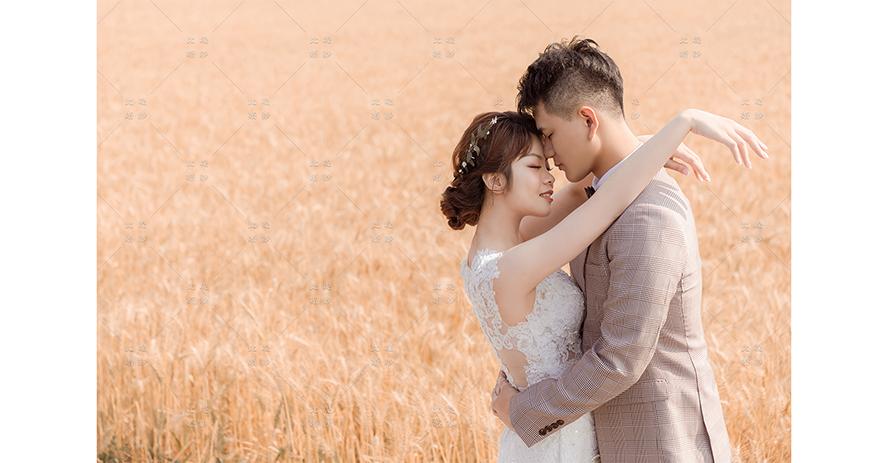 台中婚紗 價位 比堤婚紗 推薦新人:Wang&Lin 難得一見 大雅麥田